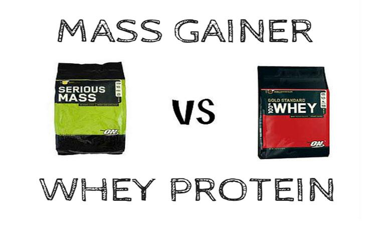 تفاوت بین گینر و پروتئین
